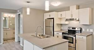 BRAND NEW 1 BEDROOM SUITES IN NORTH KILDONAN AVAILABLE OCT 1ST!
