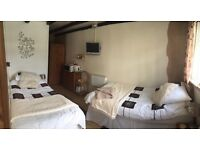 Twin Room To Let £130.00 per week