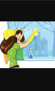 Experienced detailed cleaning gal ready to make you life easier  London Ontario image 1