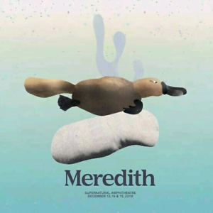 Meredith 2019 Ticket