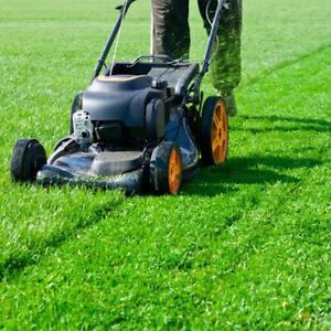 Lawn mowing crew Evanston Gawler Area Preview