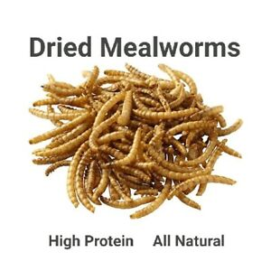 100% Natural Dried Meal Worms Silver Sands Mandurah Area Preview