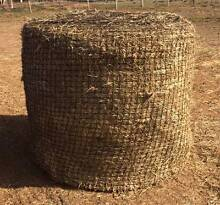 Round Bales - Square Bales - Slow Feeding Hay Nets Werribee Wyndham Area Preview