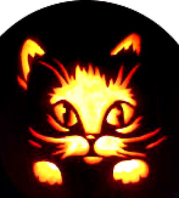 20 water slide manicure transfer Halloween Pumpkin french tip  trending