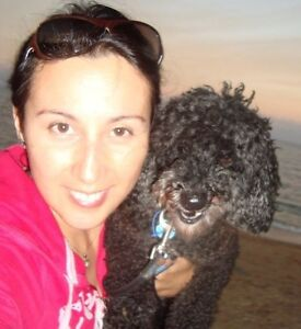 Loving Pet sitter in North Brisbane Redcliffe Redcliffe Area Preview