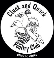 CLUCK & QUACK POULTRY CLUB