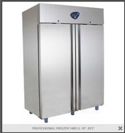 Desmon FREEZER 1400 Lt EACH £999.00 ONO