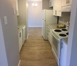 Elegant 2 Bedroom Off Of Quinpool With Tons Of Natural Light!