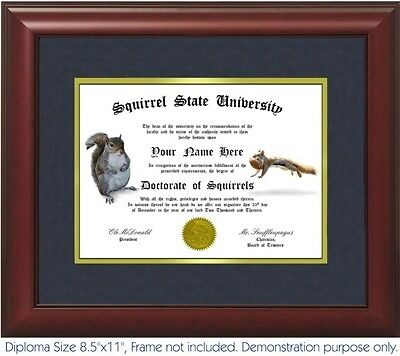 Squirrel Diploma   Personalized With Your Name Date  Best On Ebay  Squirrels