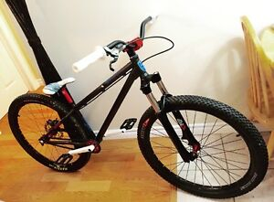 2010 Norco Ryde completely custom