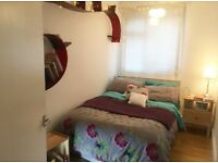 Lovely double fully furnished room in cozy apartment for rent.