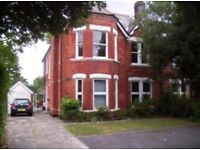 1 double bedroom available in Westbourne