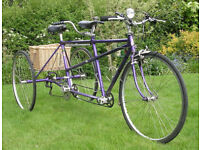 Tandem Tricycle . Made by Longstaff , As new . being sold by National Cycle Museum charity