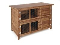 2x rabbits - hutch - all accessories