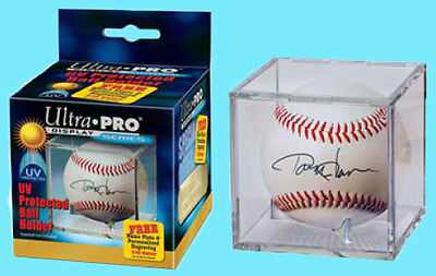 6 UV Protected Display Case Ball Holder ~ BCW Pro Baseball Cubes w//Stand