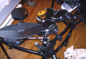 Alesis DM8 Pro Electronic Drums, (dog not included!)