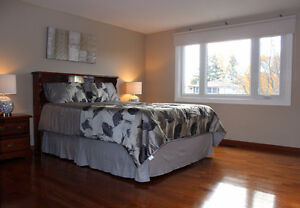 15 Harrow Court Totally Update and Renovated! 50x160 mature lot! London Ontario image 6