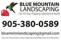 Affordable decks, fencing and driveways