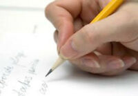 ESSAYS - TERM PAPERS - DISSERTATIONS - LOW PRICES