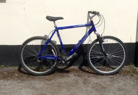 "GENTS BLUE MOUNTAIN BIKE 19"" FRAME £45"