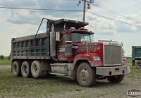 dz licenses male looking for dump truck experience.