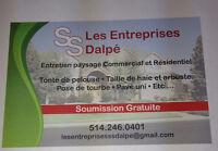 LES ENTREPRISES S.S.DALPÉ  PAYSAGEMENT