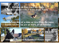 Dog Sitter, 3 miles from Nairn. Care for your Dog/s whilst you are at work or on holiday.