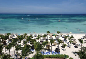 Marriott Aruba Surf Club for Rent Nov 24-Dec 1 and Dec 1-8th
