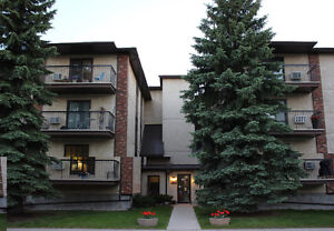 Meticulous & Upgraded 3rd Floor Unit Great View in St Vital