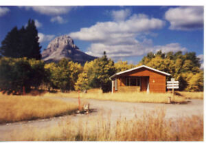 $29,900! RV LOTS FOR SALE IN CROWSNEST PASS!