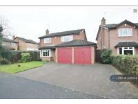 4 bedroom house in Mulberry Road, Rugby, CV22 (4 bed)