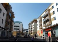 THREE BEDROOM FLAT TO RENT, City Point, Brighton, FURN/UNF