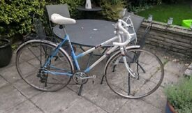 Vintage Ladies Road Bicycle Riva Raleigh (offers accepted)