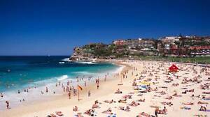 Beautiful furnished Beachside Pad for short-term lease Bondi Beach Eastern Suburbs Preview
