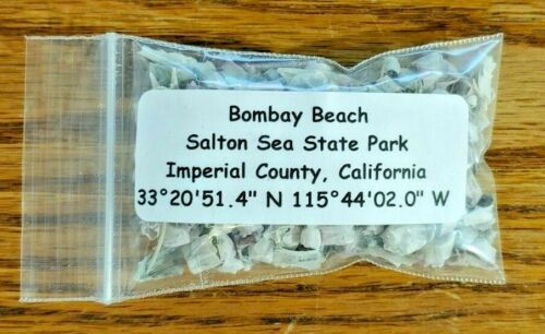 Bombay Beach Salton Sea State Park Sand Fish Bone Sample Imperial California