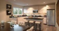 BRAND NEW LUXURY TOWNHOME RENTALS IN SOUTH POINTE 100...