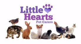 Little Hearts Pet Carers - Local to Willingham area, Cambridgeshire