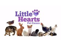 Little Hearts Pet Carers - Local to Willingham area, Cambridgeshire