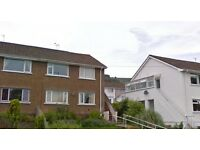 Two bedroom spacious ground floor flat available to rent in Upper Cwmbran