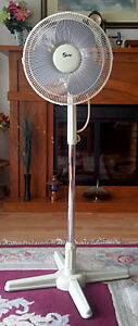 3-speed, oscillating pedestal fan - excellent condition!