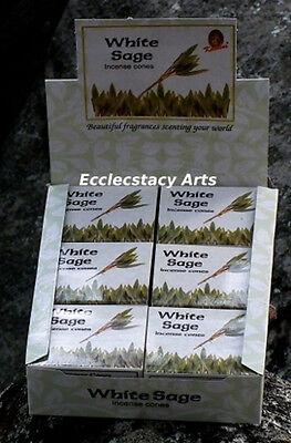 Kamini White Sage Incense Cone - 10 20 30 80 60 100 120 Incense Cones-U Pick  ()