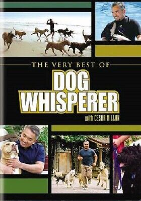 The Very Best of Dog Whisperer DVD Cesar Millan National Geographic problem