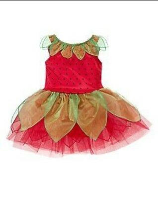 GYMBOREE BERRY BUTTERFLY HALLOWEEN COSTUME 6 12 18 24 2T 3T NWT