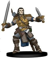D&D Miniatures - $500 - lost/perdus - compensation/reward $500