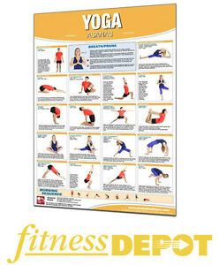 PRODUCTIVE FITNESS Laminated Chart - Yoga CHYOGA
