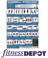 PRODUCTIVE FITNESS Fitness Chart Dumbbell Shoulders & Arms CHDSA