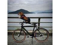 Buddy rider dog puppy bike carrier