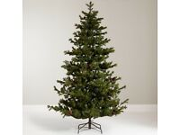 John Lewis 7ft Ruskin Pine Christmas Tree
