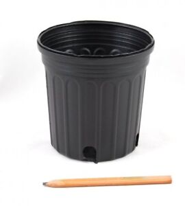 WANTED- nursery plant pots