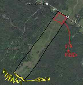 98.8 ACRES, GREAT PRICE, BEAUTIFUL VIEW AND CROWN LAND ACCESS